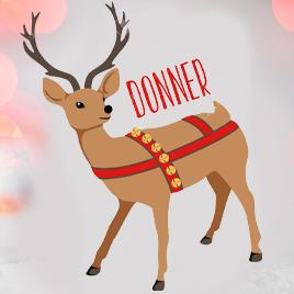 Reindeers - Learn about Santa's Reindeer- Reindeer FAQ'S.